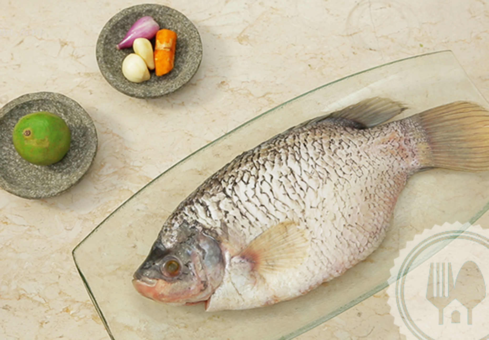 5-ways-to-tell-if-a-fish-has-formalin